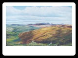 View Of The Mournes Near Hilltown oils on Canvas 30x20inch